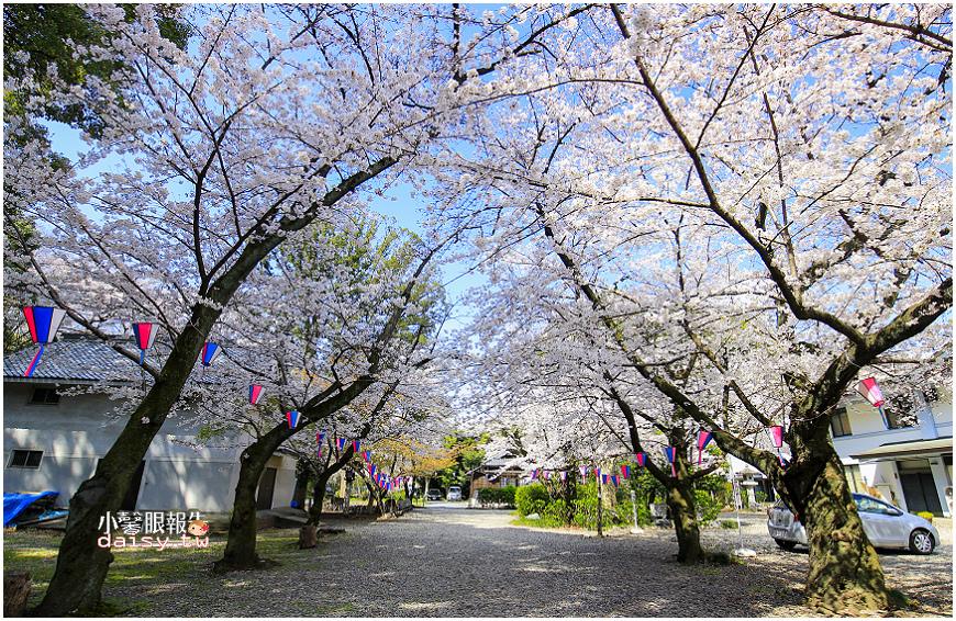 aichi-gokoku (13).jpg