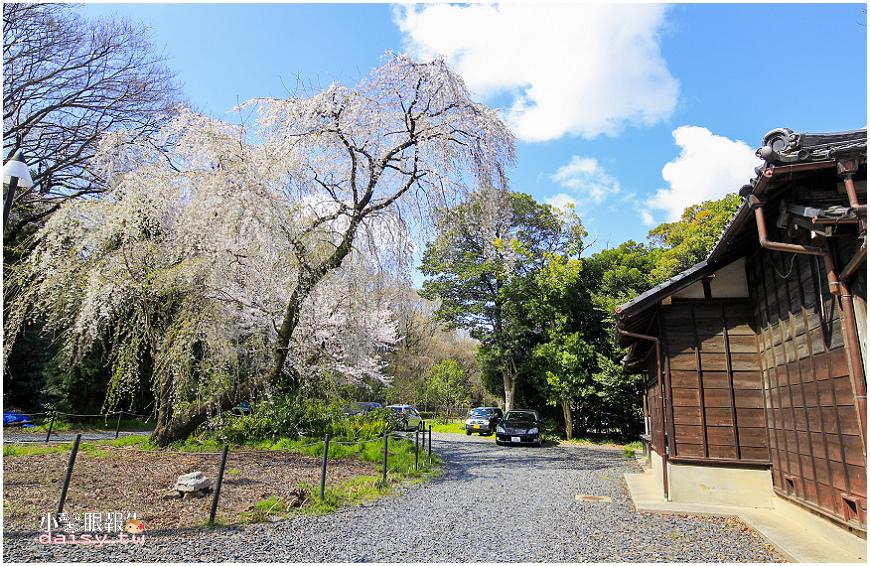 aichi-gokoku (22).jpg