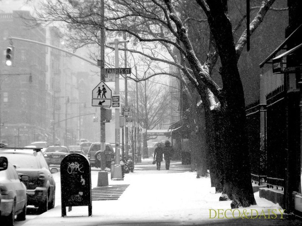 west village snow-1.jpg