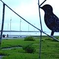 20100518高雄resize62.JPG