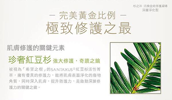 杉之淬 活煥金純修護凝磚刷具組 深層淨化   SANTAXUS.png