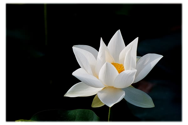 佛教電子書圖片-251