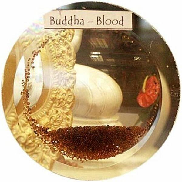 佛教電子書圖片-259