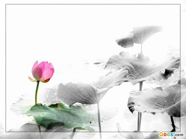 佛教電子書圖片-356
