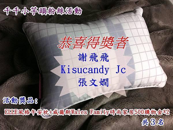 ELLE風格午安枕-加碼1.jpg