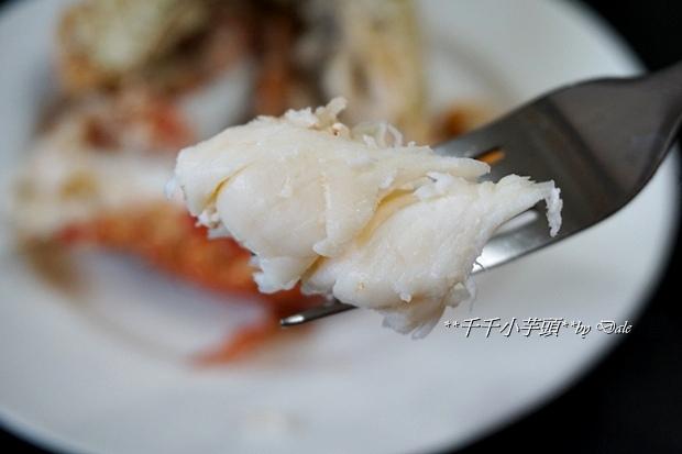 貝里斯龍蝦鍋53