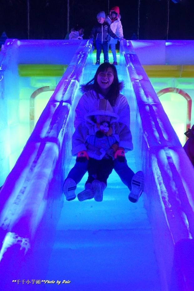 高雄凍物園哈爾濱藝術展33.JPG