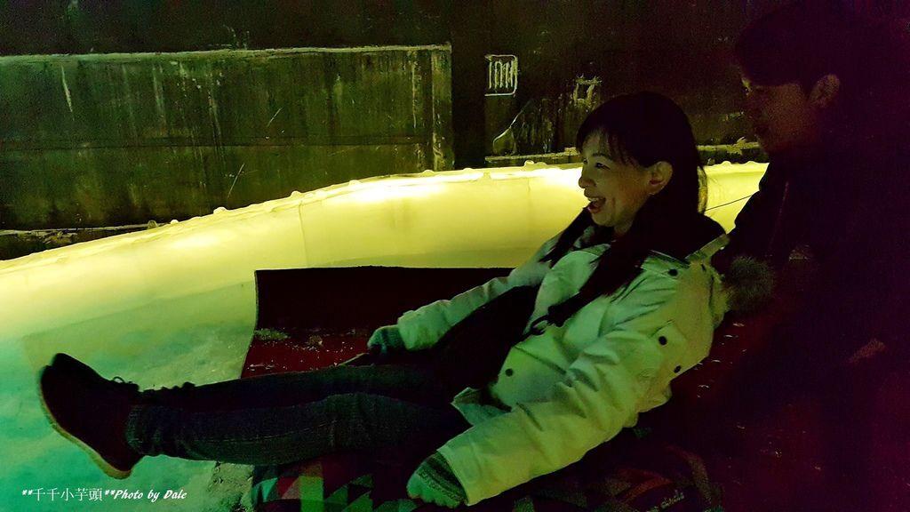 敗 高雄凍物園哈爾濱藝術展50