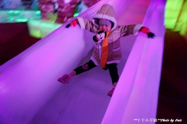 高雄凍物園哈爾濱藝術展52.JPG