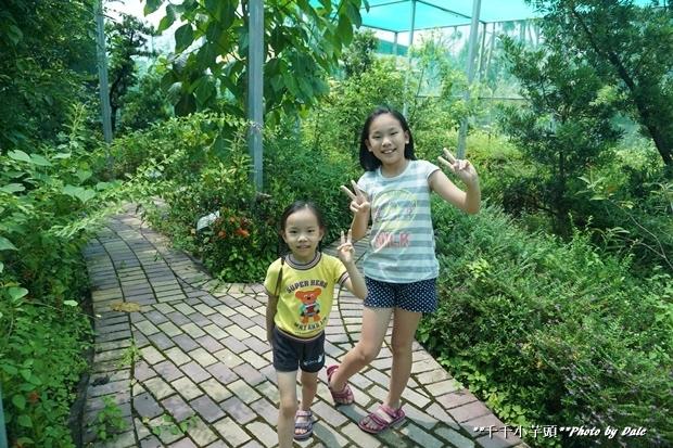 秘密花園22.JPG