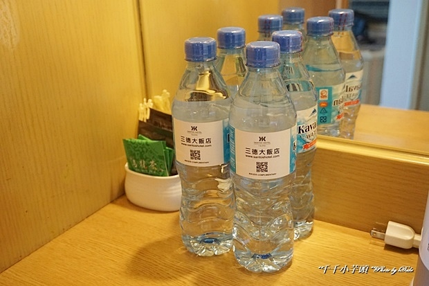 台北三德大飯店17.JPG
