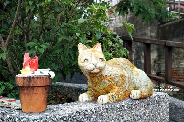 貓咪階梯7.JPG