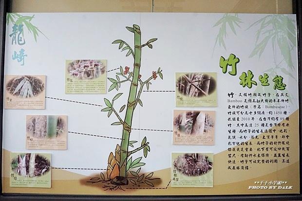 龍崎采竹生活館16.JPG