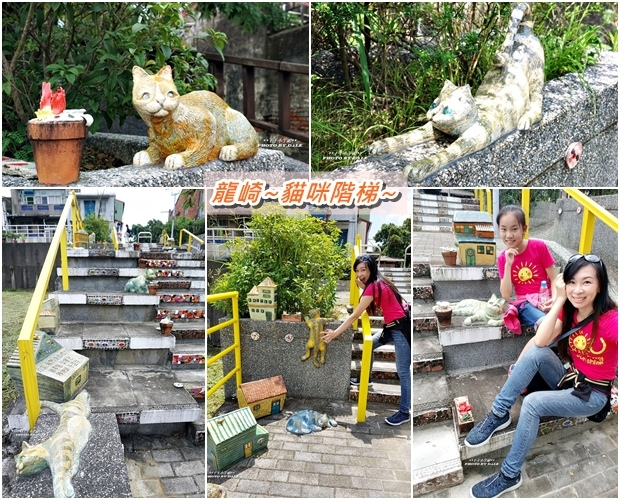 貓咪階梯12.jpg