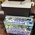 Aqua Eri專利技術免換水過濾系統24.jpg