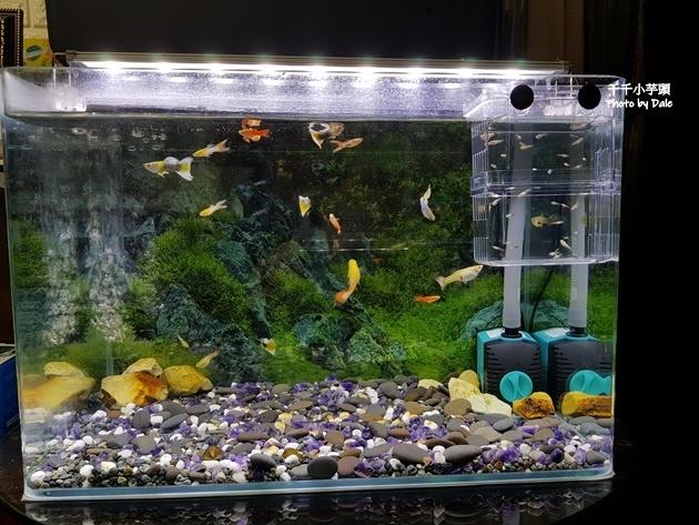 Aqua Eri專利技術免換水過濾系統42.jpg