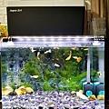 Aqua Eri專利技術免換水過濾系統44.jpg