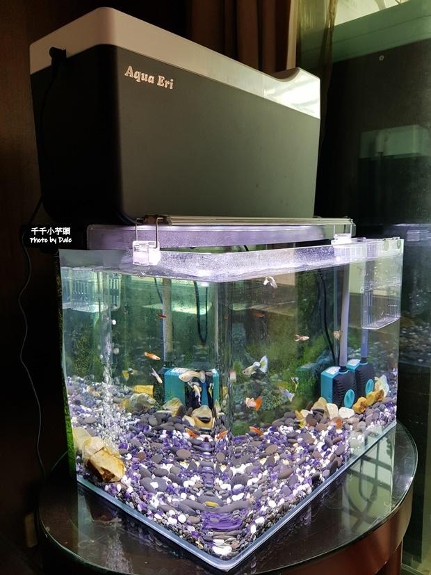 Aqua Eri專利技術免換水過濾系統48.jpg