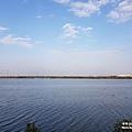 永安濕地9.jpg
