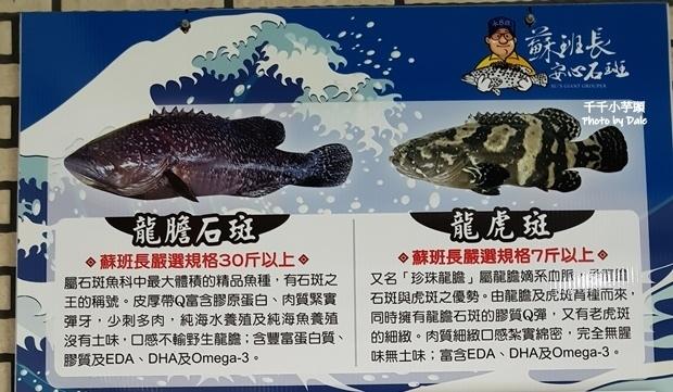 蘇班長安心石斑漁場8.jpg