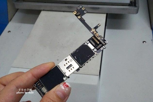 蘋果樹通訊16-.JPG