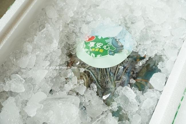 無毒農泰國蝦4.JPG