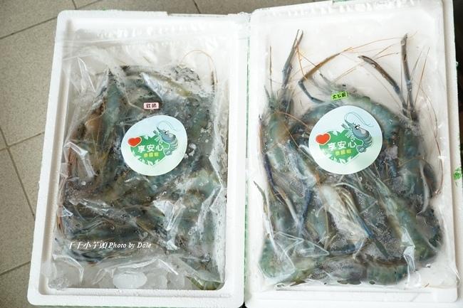 無毒農泰國蝦7.JPG