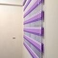 林安娜頂級公寓_1802.jpg