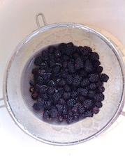 可麗餅與黑莓醬