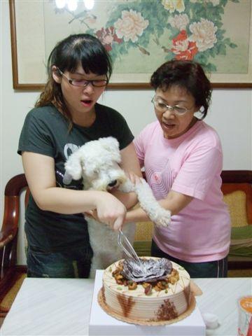 切蛋糕囉!!  (宅:我又不能吃...切心酸的...)