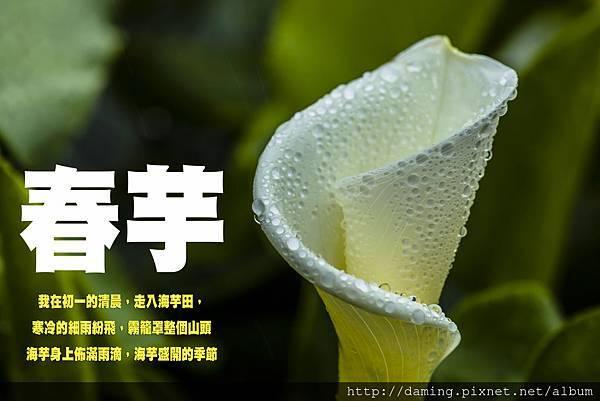 20130210-071124-_MG_8333-2