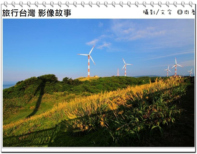 nEO_IMG_36.jpg