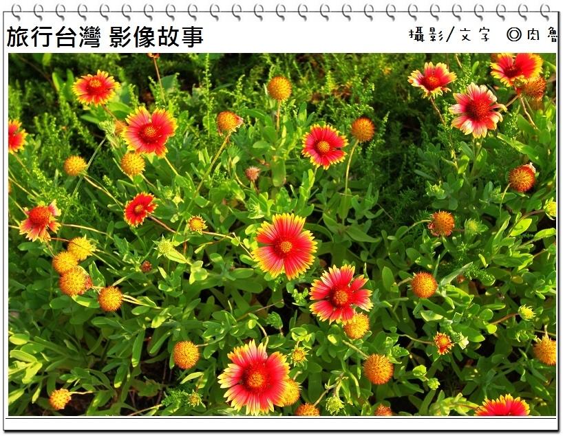 nEO_IMG_40.jpg