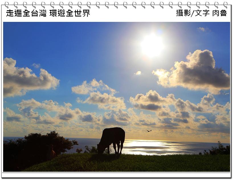nEO_IMG_27.jpg