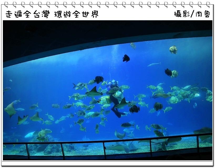 nEO_IMG_44.jpg