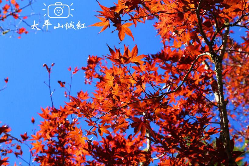 nEO_IMG_07.jpg
