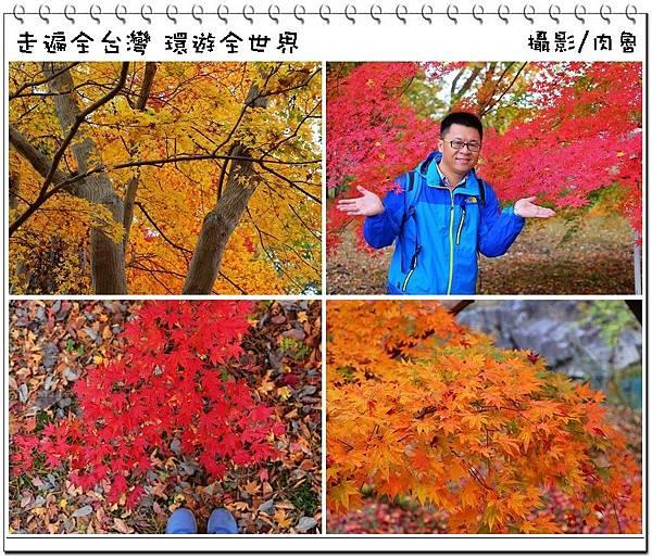 nEO_IMG_5.jpg