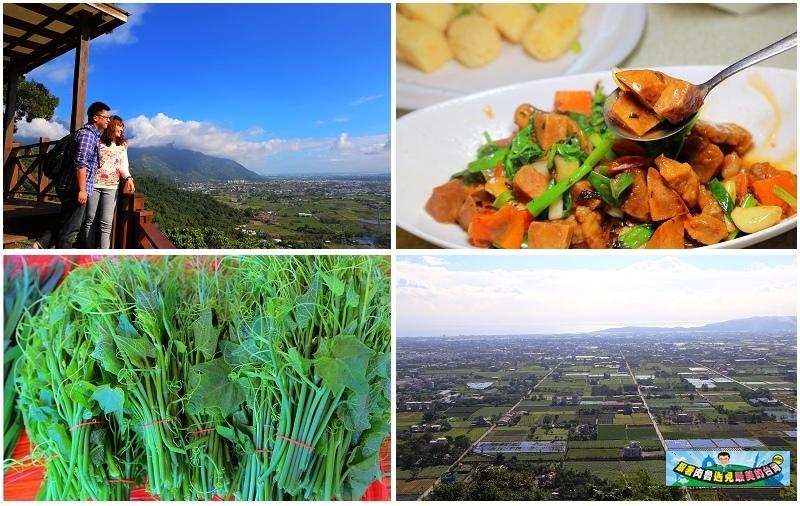 花蓮特產|客庄吉安三寶!龍鬚菜、芋頭及韭菜!幸福台九奇萊山下的豐饒物產!