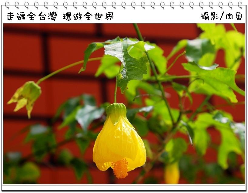 nEO_IMG_7.jpg