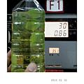 2013_01_31