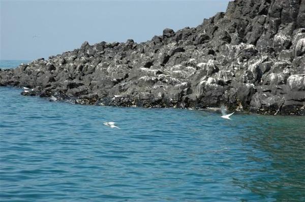 風景-柱狀玄武岩島嶼2.JPG