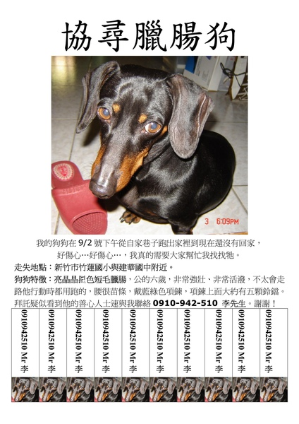 Amigo協尋海報2.jpg