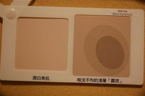 DSC_7171-K300.jpg