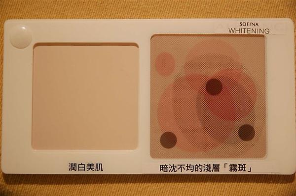 DSC_7174-K300.jpg