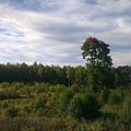 IMAG0149