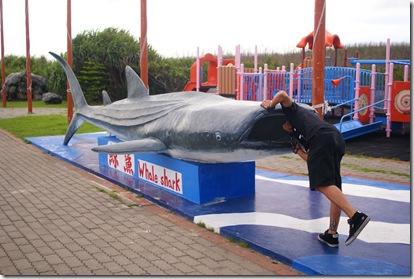鯊很大~!
