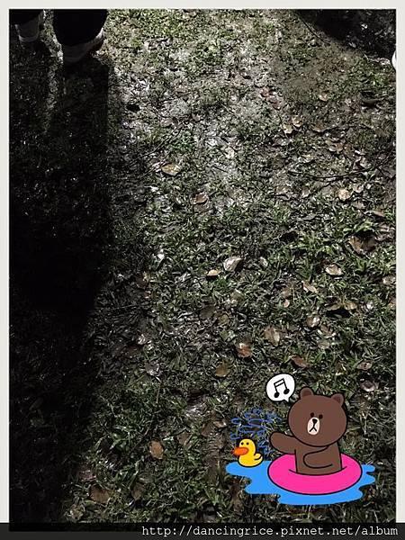 20170311TSO音樂會3.jpg