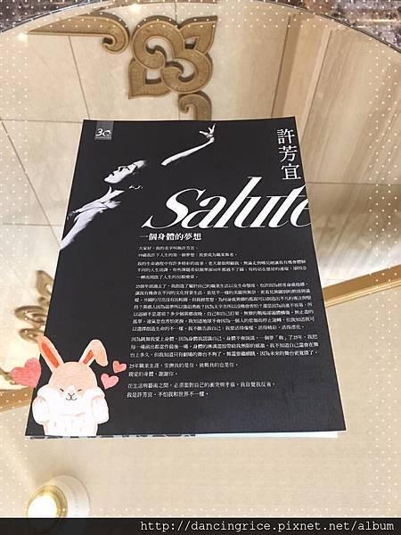 2017許芳宜Salute.jpg