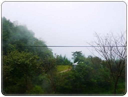 P1000446