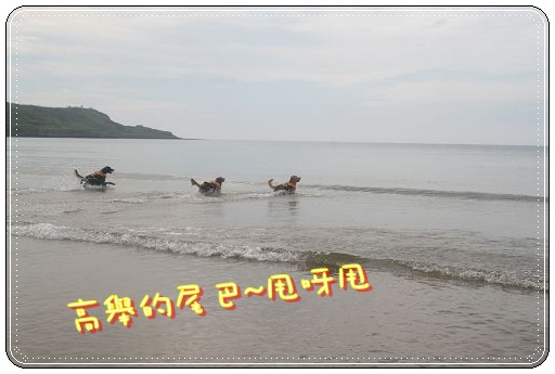 IMG_0437.jpg